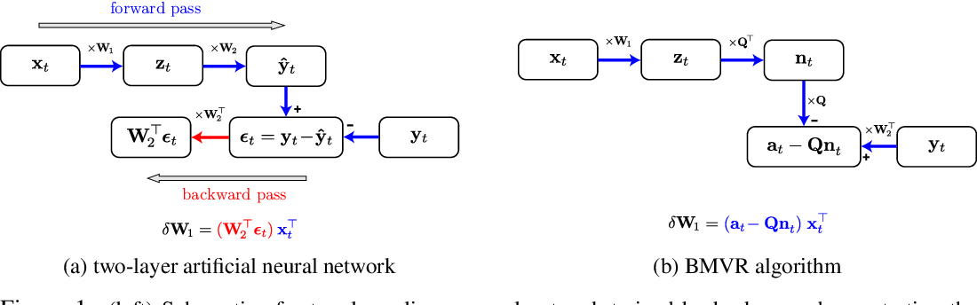 Figure 1 for A biologically plausible neural network for local supervision in cortical microcircuits