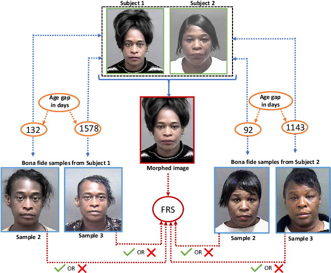 Figure 1 for On the Influence of Ageing on Face Morph Attacks: Vulnerability and Detection