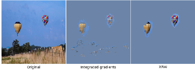 Figure 1 for Segment Integrated Gradients: Better attributions through regions