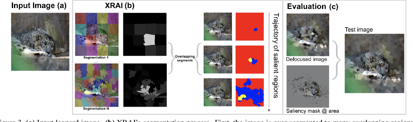 Figure 4 for Segment Integrated Gradients: Better attributions through regions