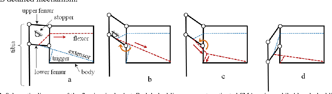 Figure 2 from A Miniature Jumping Robot with Flea-inspired ... on