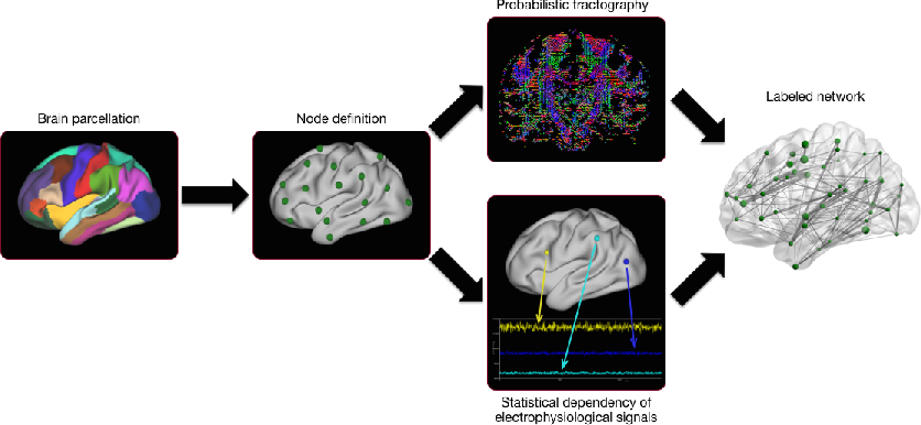 Figure 1 for Comparison of Brain Networks with Unknown Correspondences