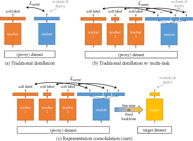 Figure 1 for Representation Consolidation for Training Expert Students