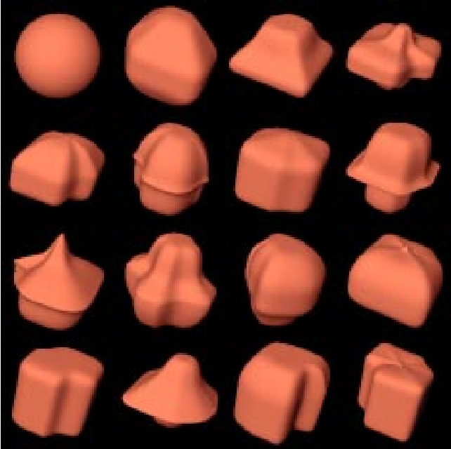 Figure 1: A sample of shapes that can achieved by deforming an initial spherical shape randomly using its 19 control points.