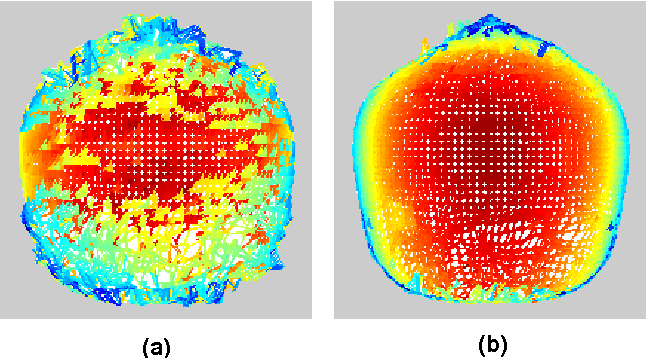 Figure 3: Comparison of the results without and with global shape constraints: (a) locally tracked initial results; (b) results after nine iterations with global shape constraints.