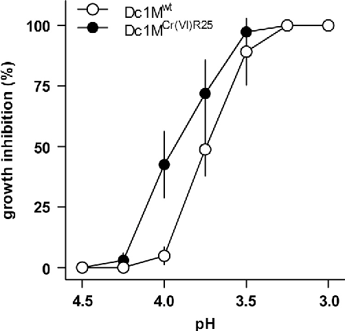 Fig. 1. Effect of culture medium acidification on cell growth of wild (Dc1Mwt, ○) and Cr(VI) tolerant (Dc1MCr(VI)R25, ●) Dictyosphaerium chlorelloides strains. Points represent mean7sd of 8 replicates (n¼8).