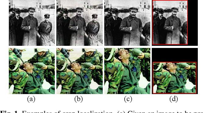Figure 1 for No way to crop: On robust image crop localization
