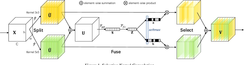 Figure 1 for Selective Kernel Networks