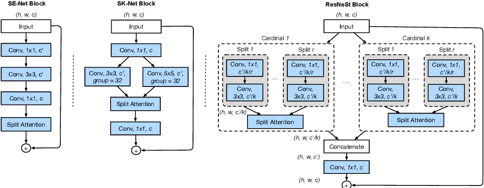 Figure 2 for ResNeSt: Split-Attention Networks