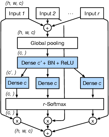 Figure 3 for ResNeSt: Split-Attention Networks