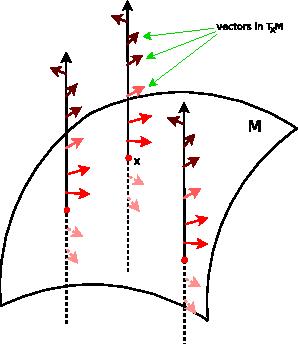 Figure 3 for Symmetry in Image Registration and Deformation Modeling