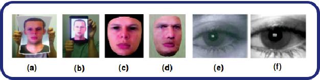 Figure 1 for FDSNet: Finger dorsal image spoof detection network using light field camera
