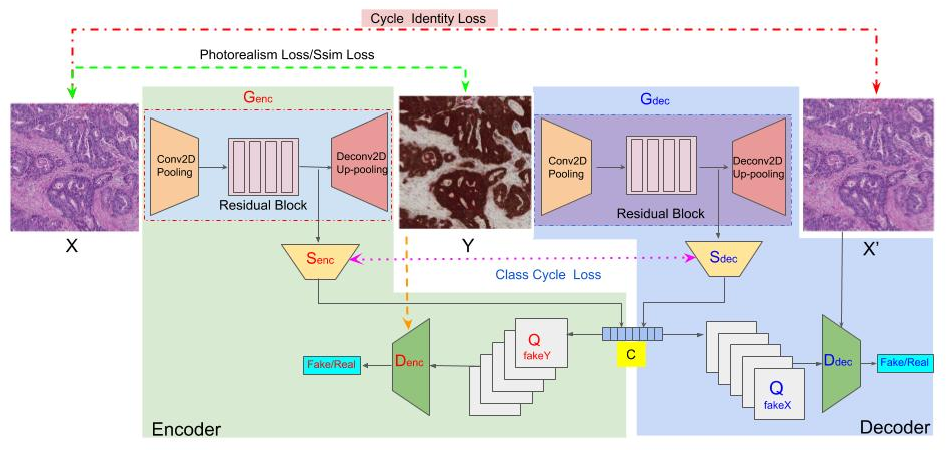 Figure 4 for GAN-based Virtual Re-Staining: A Promising Solution for Whole Slide Image Analysis