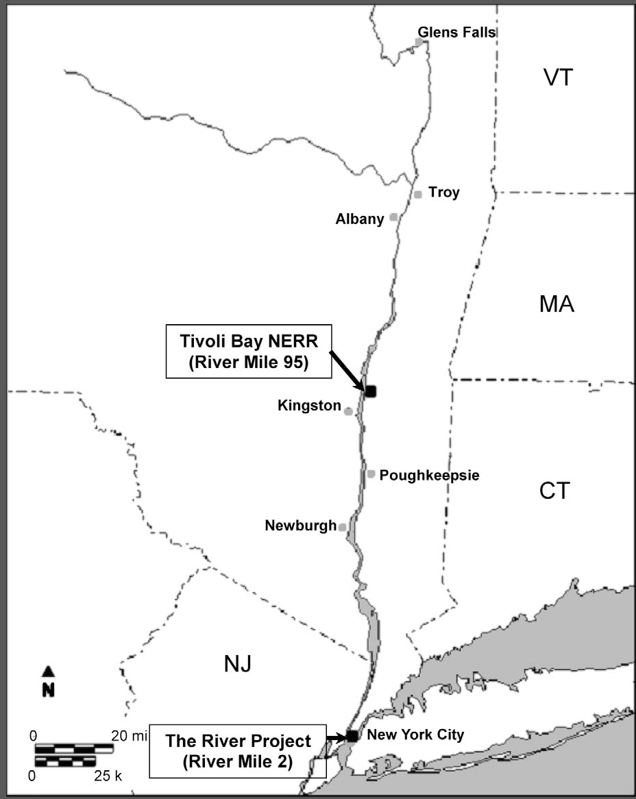 Figure 1 from Soniferous Fishes in the Hudson River