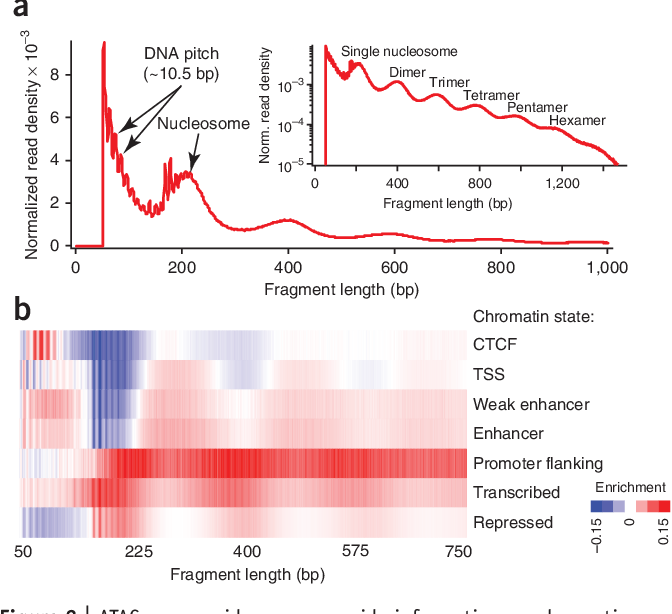 Figure 2 From Transposition Of Native Chromatin For Fast