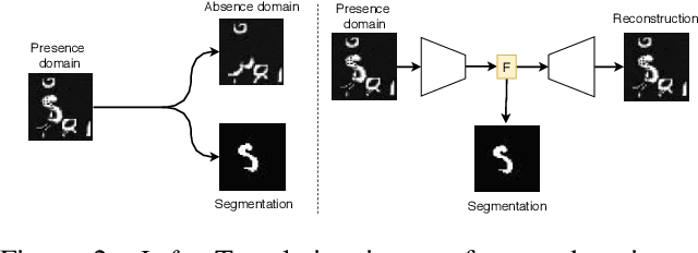 Figure 3 for Boosting segmentation with weak supervision from image-to-image translation