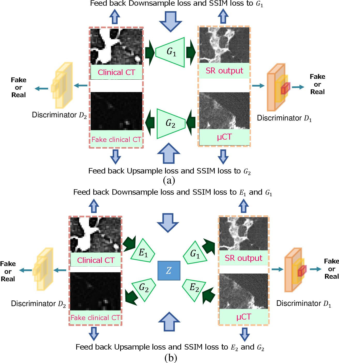 Figure 1 for Multi-modality super-resolution loss for GAN-based super-resolution of clinical CT images using micro CT image database