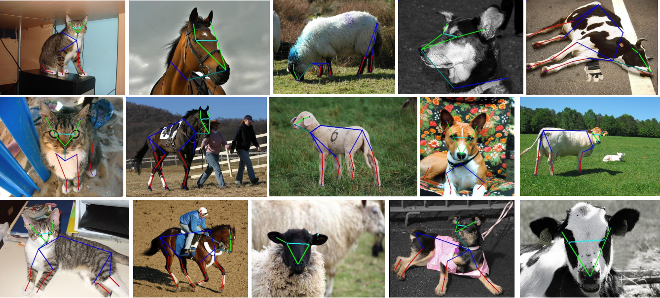 Figure 1 for Cross-Domain Adaptation for Animal Pose Estimation