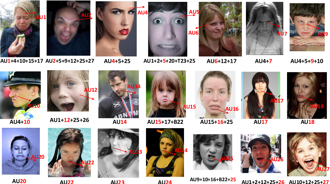 Figure 1 for RAF-AU Database: In-the-Wild Facial Expressions with Subjective Emotion Judgement and Objective AU Annotations