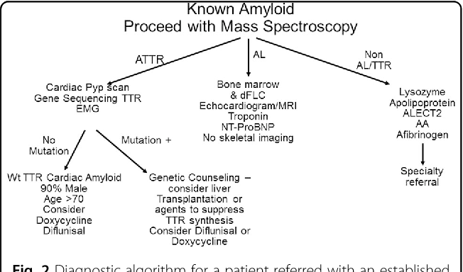 Immunoglobulin light chain amyloidosis diagnosis and