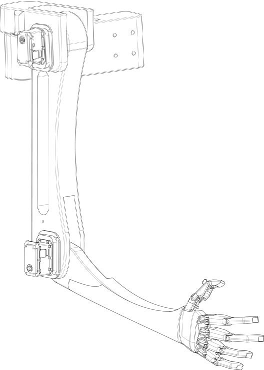 Arm Workout Diagram