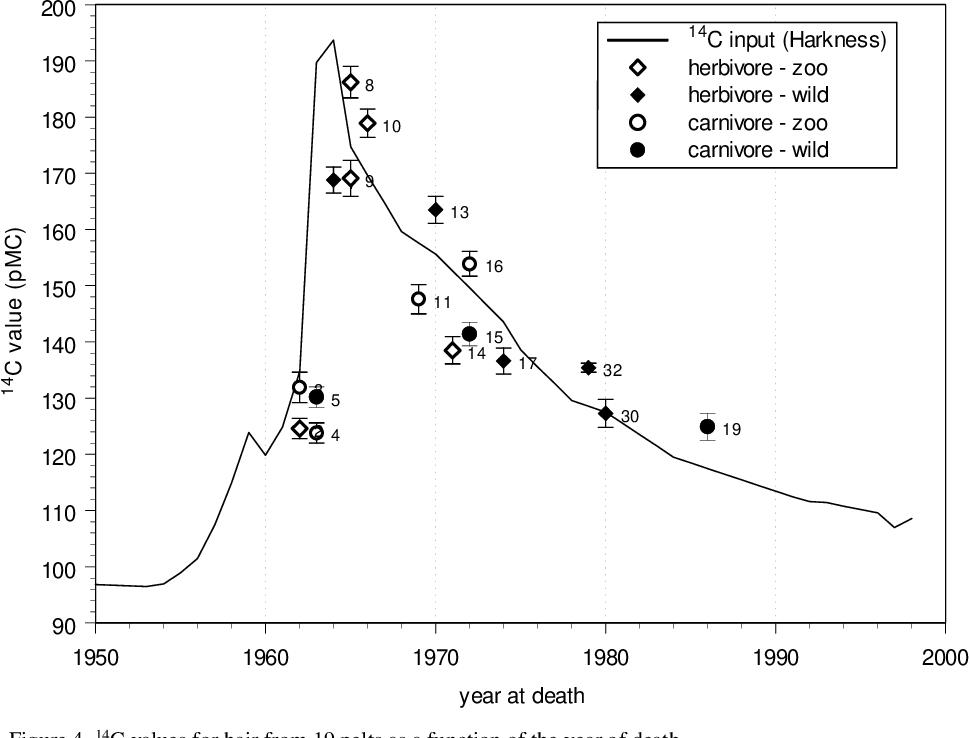 Halbwertszeit in Carbon Dating
