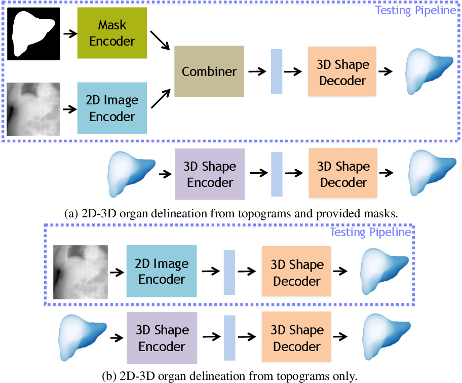 Figure 1 for 3D Organ Shape Reconstruction from Topogram Images