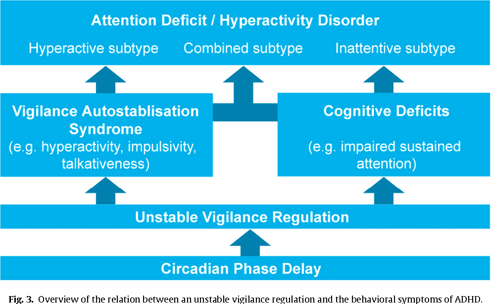 Hyperactivity Insomnia And Behavior >> Neurofeedback In Adhd And Insomnia Vigilance Stabilization Through