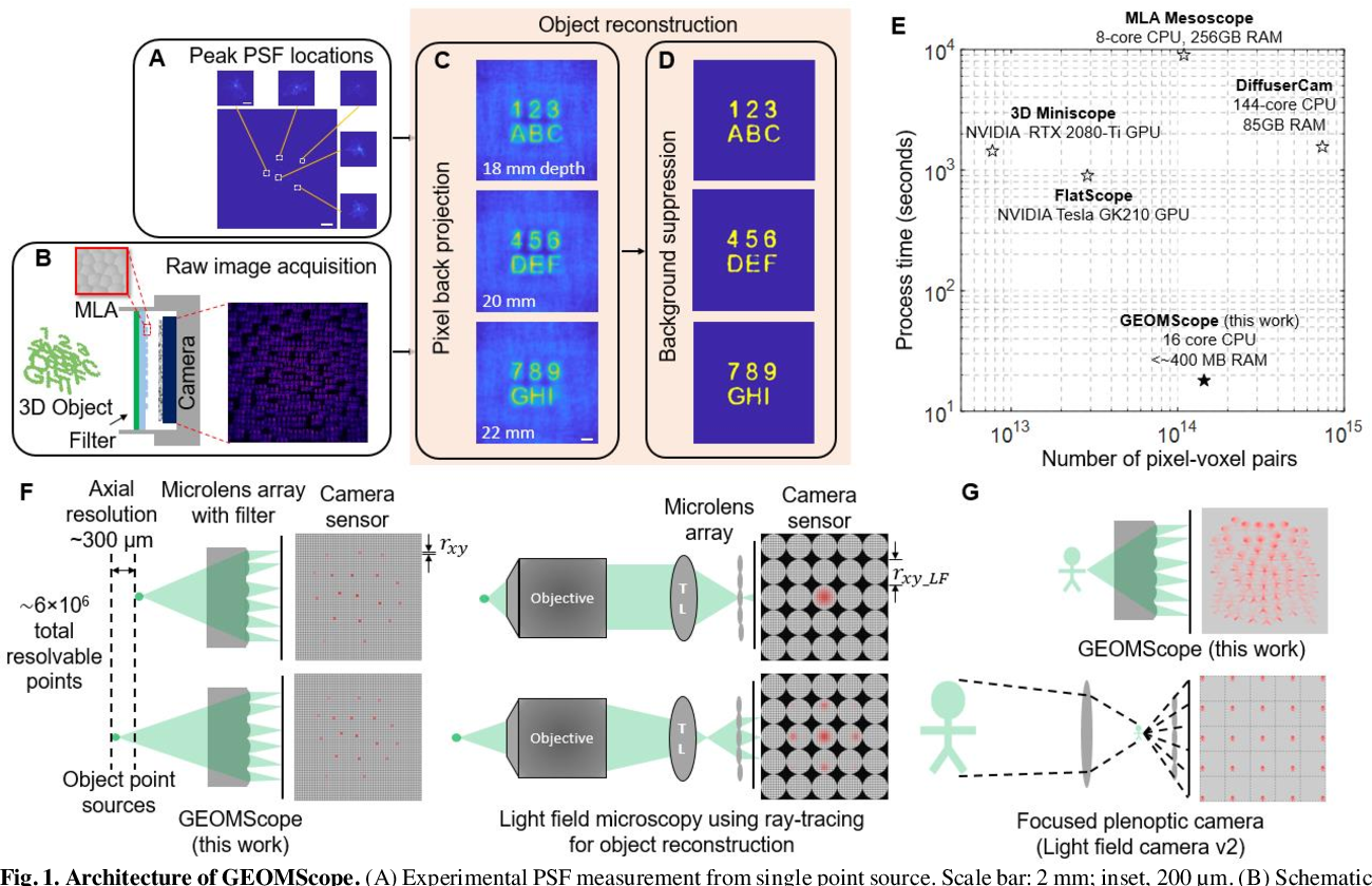 Figure 1 for GEOMScope: Large Field-of-view 3D Lensless Microscopy with Low Computational Complexity
