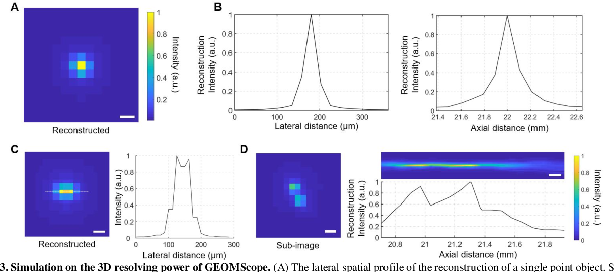 Figure 4 for GEOMScope: Large Field-of-view 3D Lensless Microscopy with Low Computational Complexity