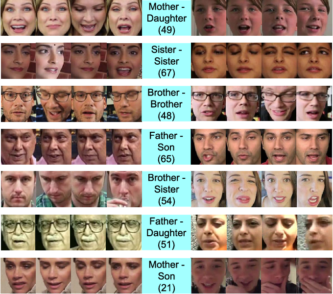 Figure 4 for Supervised Mixed Norm Autoencoder for Kinship Verification in Unconstrained Videos