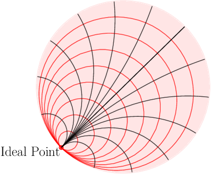 Figure 3 for HoroPCA: Hyperbolic Dimensionality Reduction via Horospherical Projections