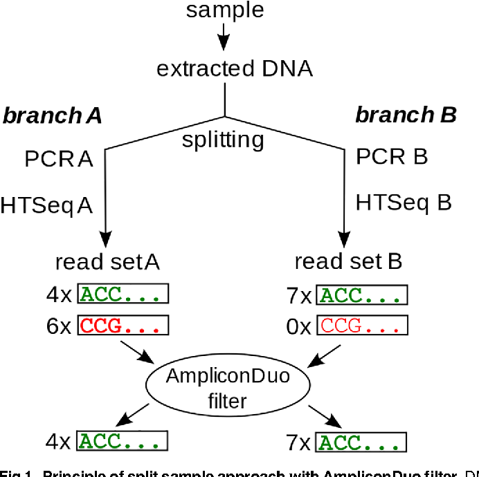 AmpliconDuo: A Split-Sample Filtering Protocol for High-Throughput