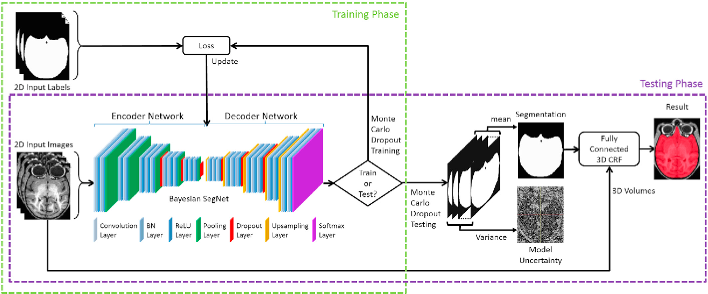 Figure 1 for Bayesian convolutional neural network based MRI brain extraction on nonhuman primates