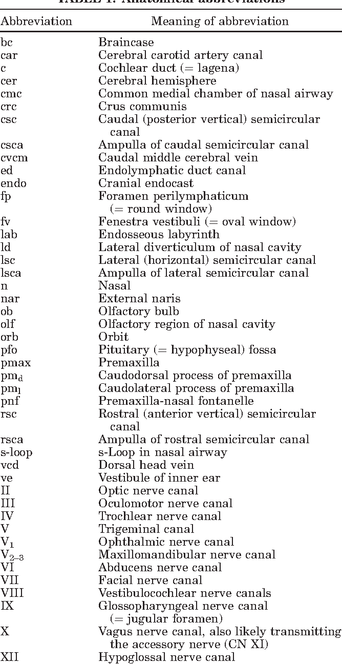 Endocranial anatomy of lambeosaurine hadrosaurids (Dinosauria ...