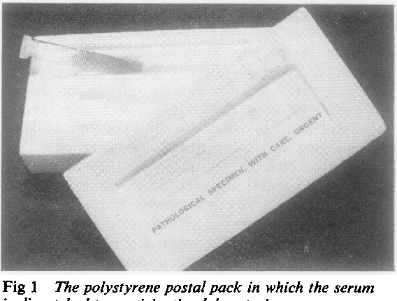 polystyrene research papers The funniest, darkest, corporate finance research papers and polystyrene research papers most unintentionally free example of a research paper offensive scientific.