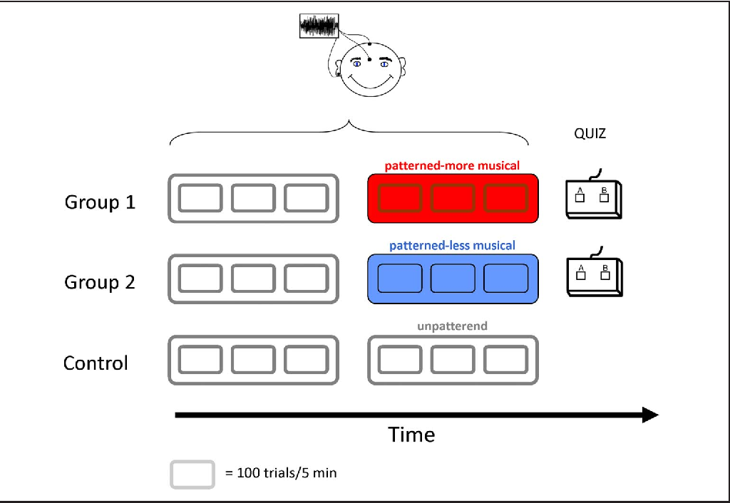 Figure 1. Experimental overview. ABRs to complex sounds (cABRs) were obtained using scalp electrodes while participants listened to continuous sequences of complex tones that formed either a random or patterned sequence composed of four recurring patterns (red = more musical, blue = less musical). Each 5-min sequence was presented three times, with intervening breaks. Electrodes were placed on the central vertex, forehead, and right earlobe. During the experiment, participants sat in a comfortable reclining chair in a soundproof, electrically shielded booth. Participants were instructed to stay awake while the sounds were presented and to keep their gaze on the nature images appearing on the screen in front of them. All participants heard two conditions, with the