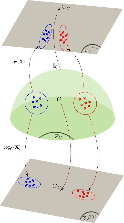 Fig. 4. Comparison between two mappings respectively centered at the identity or at the mean G.