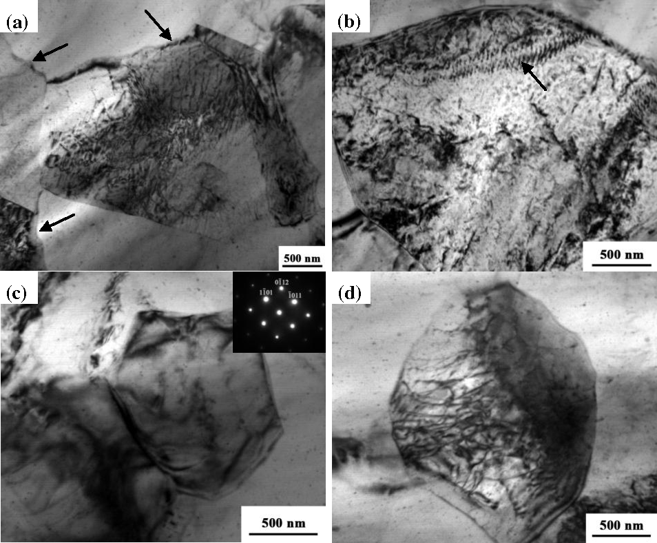 Figure 6. Typical TEM micrographs of the FSP AZ31 specimen: (a) and (b) NFSP; (c) and (d) SFSP.