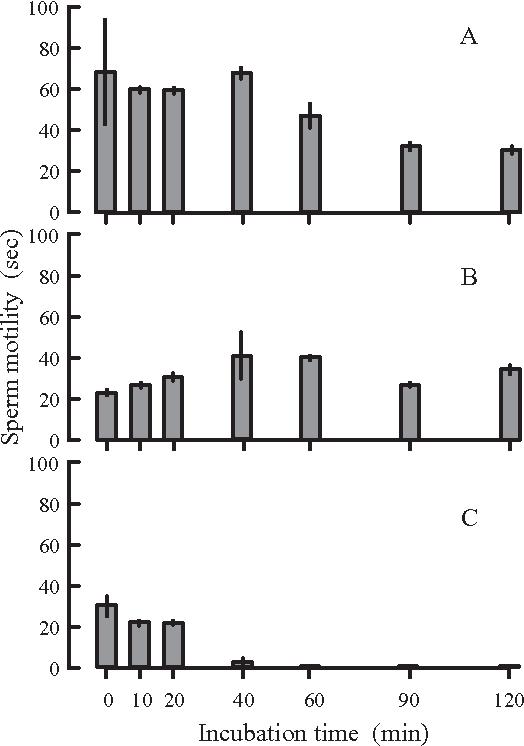 Sperm metabolism of the teleost fishes chalcalburnus