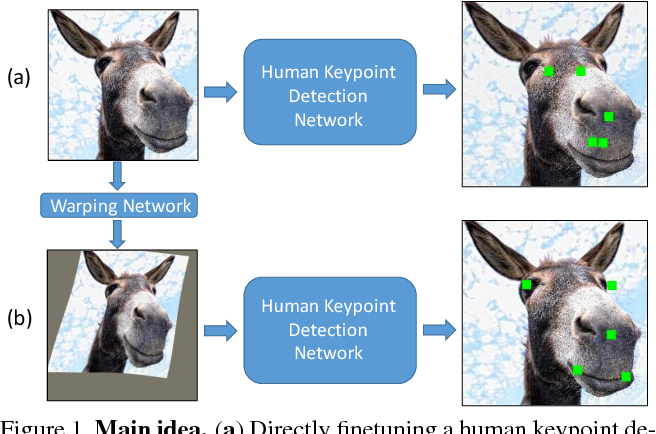Figure 1 for Interspecies Knowledge Transfer for Facial Keypoint Detection