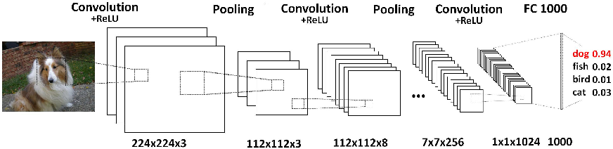 Figure 1 for DeepTracker: Visualizing the Training Process of Convolutional Neural Networks