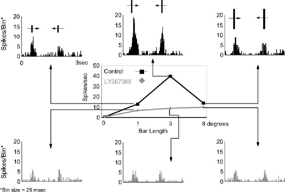 Figure 3. The effect of LY367385 on the length tuning of LGN cells. Data are taken from an OFF-center X cell. Length-tuning curves were constructed for a bar of varying length moving in both directions over the receptive field. Bar width in this case was 0.5°. The bar lengths were presented in a interleaved randomized sequence. Responses were averaged over 15 trials and assessed from the accumulated count in the bins constituting the response area in the PSTH after subtraction of the background discharge. Black curve is control response; gray curve is response during LY367385 application (6 min, 60 nA). For each length of the bar, the corresponding PSTH is shown. It is clear that the response decreases when the metabotropic antagonist is ejected. The strongest effect is seen for the optimal length (3° in this example).