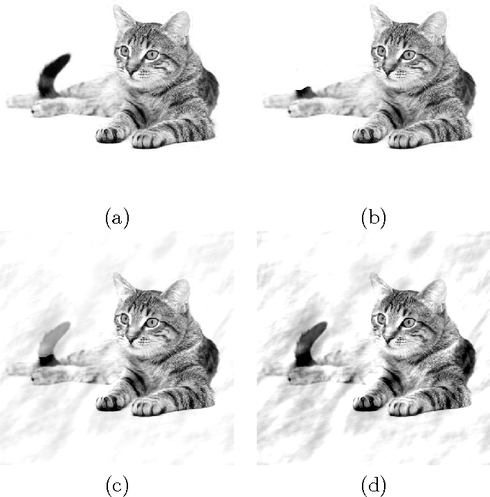 Figure 1 for Anisotropic twicing for single particle reconstruction using autocorrelation analysis