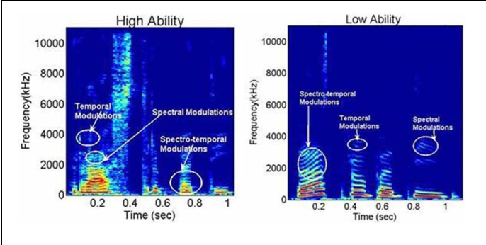 Figure 1 from Are you a good mimic? Neuro-acoustic signatures for
