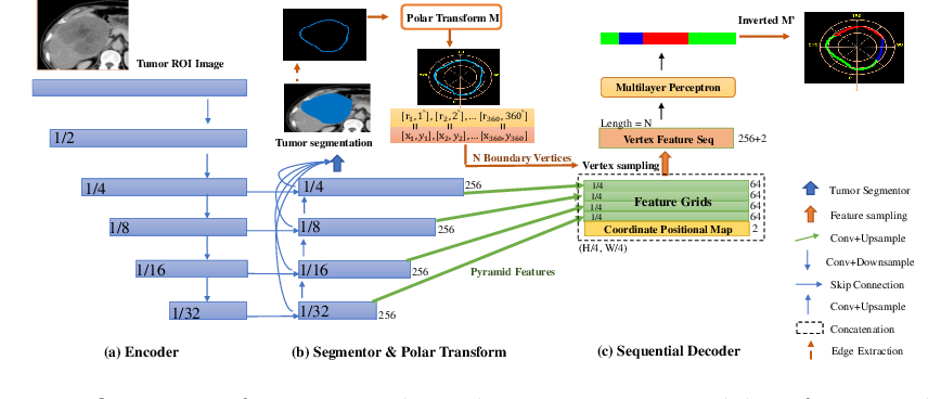 Figure 3 for Sequential Learning on Liver Tumor Boundary Semantics and Prognostic Biomarker Mining