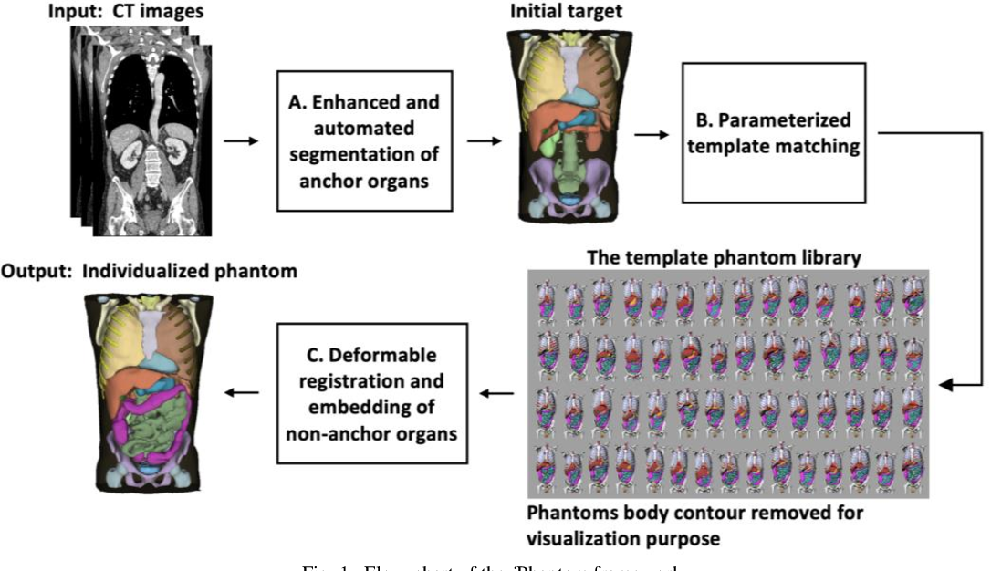 Figure 1 for iPhantom: a framework for automated creation of individualized computational phantoms and its application to CT organ dosimetry