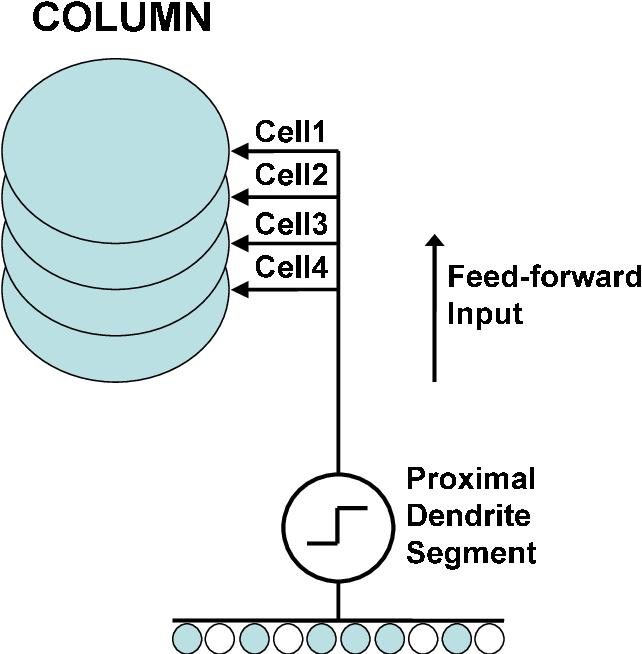 FIGURE 3.4-1 One column in an HTM region