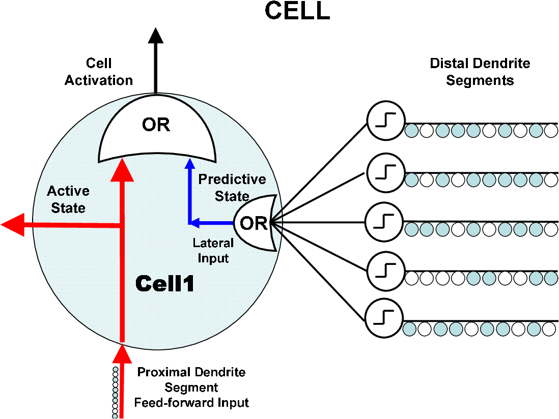 FIGURE 3.4-2 One cell of a column in an HTM region