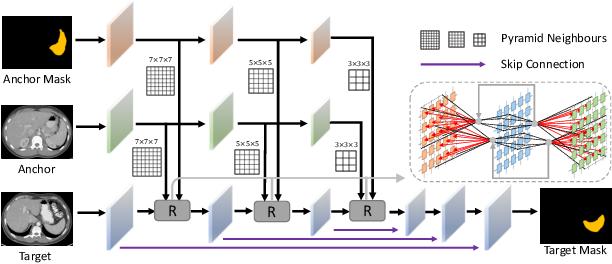 Figure 3 for Generalized Organ Segmentation by Imitating One-shot Reasoning using Anatomical Correlation